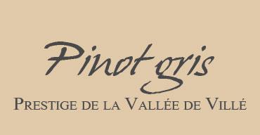 Barthel Pinot Gris Prestige de la vallée de Villé